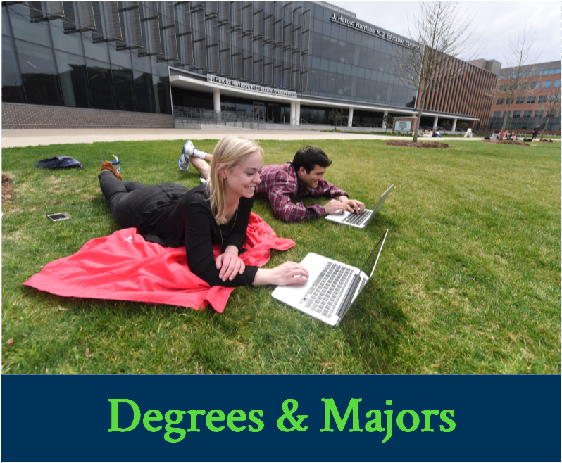 Degrees and Majors Image Link